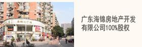 广东海锦房地产开发有限公司100%股权